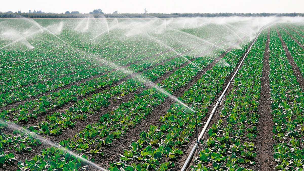 agricultura riego